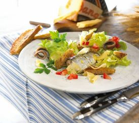 Dutch sardine salad with croutons